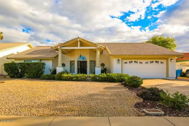 1021 E Paradise Lane, Phoenix, AZ 85022 (MLS #6200379) :: D & R Realty LLC