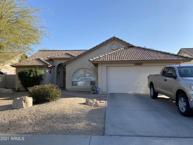 7733 W Alexandria Way, Peoria, AZ 85381 (MLS #6200383) :: Midland Real Estate Alliance