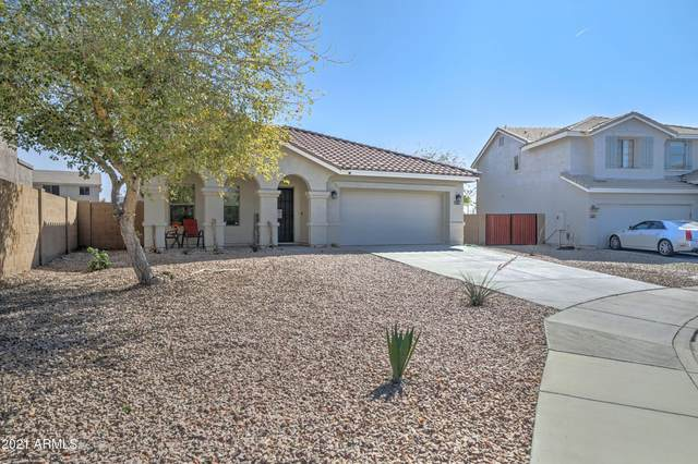 1127 S 220TH Drive, Buckeye, AZ 85326 (MLS #6200417) :: Yost Realty Group at RE/MAX Casa Grande