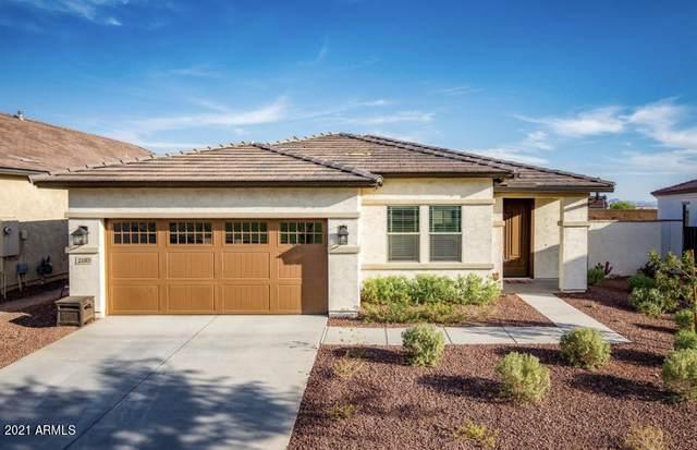 2185 N Beverly Place, Buckeye, AZ 85396 (MLS #6200476) :: Yost Realty Group at RE/MAX Casa Grande