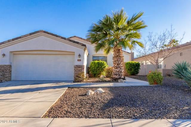 2213 E Branham Lane, Phoenix, AZ 85042 (MLS #6200521) :: Yost Realty Group at RE/MAX Casa Grande