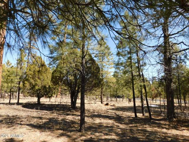 1854 Pine Canyon Drive, Happy Jack, AZ 86024 (MLS #6200564) :: Long Realty West Valley