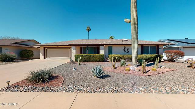 19838 N Concho Circle, Sun City, AZ 85373 (MLS #6200584) :: Executive Realty Advisors