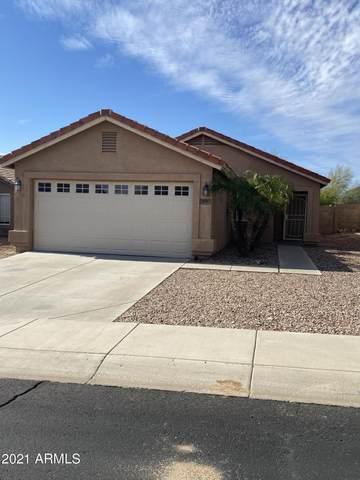 246 N 221ST Avenue, Buckeye, AZ 85326 (MLS #6200640) :: My Home Group