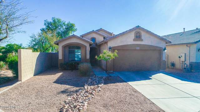 45029 W Yucca Lane, Maricopa, AZ 85139 (MLS #6200716) :: Yost Realty Group at RE/MAX Casa Grande