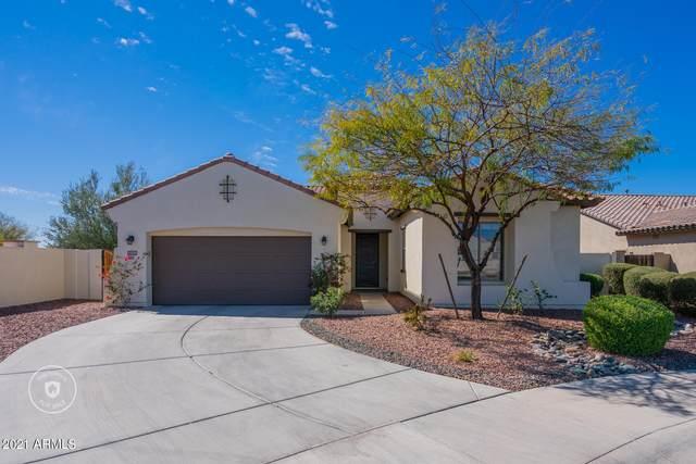 13750 S 176TH Avenue, Goodyear, AZ 85338 (MLS #6200769) :: Yost Realty Group at RE/MAX Casa Grande