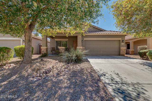 1389 W Brangus Way, San Tan Valley, AZ 85143 (MLS #6200781) :: Keller Williams Realty Phoenix