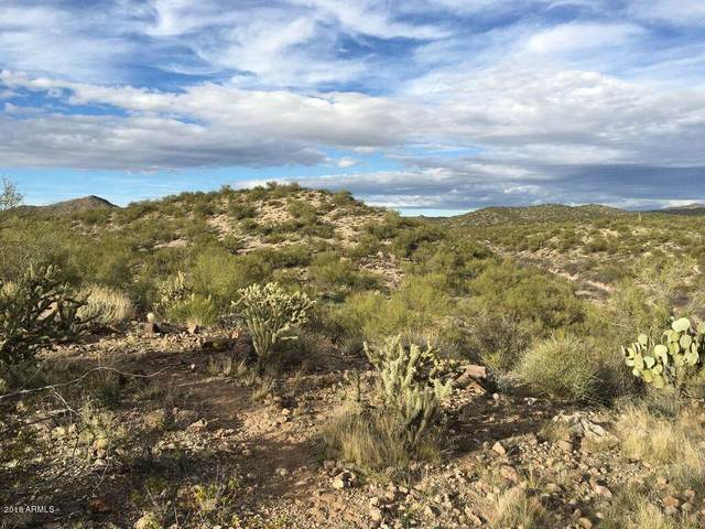 38950 S Constellation Road, Wickenburg, AZ 85390 (MLS #6200789) :: The Laughton Team