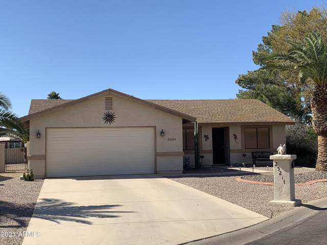 25214 S Kansas Avenue, Sun Lakes, AZ 85248 (MLS #6200792) :: Yost Realty Group at RE/MAX Casa Grande