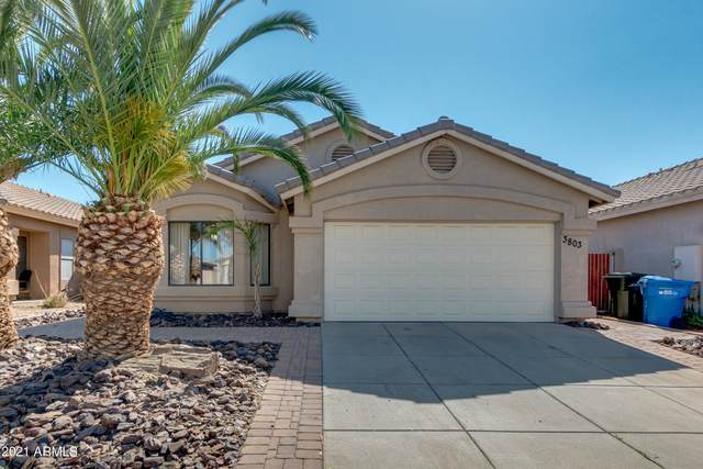 3803 W Blackhawk Drive, Glendale, AZ 85308 (MLS #6200915) :: Yost Realty Group at RE/MAX Casa Grande
