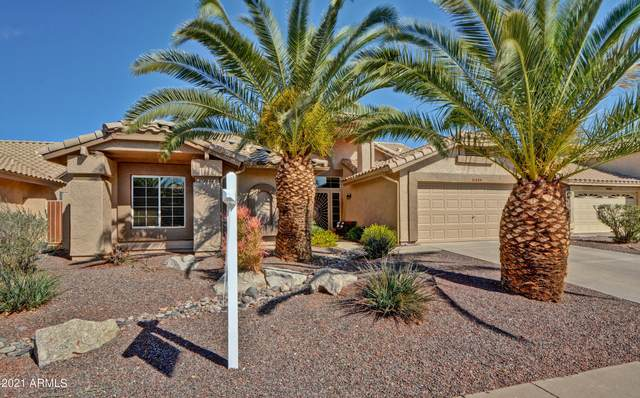 8344 W Morrow Drive, Peoria, AZ 85382 (MLS #6200926) :: The Carin Nguyen Team