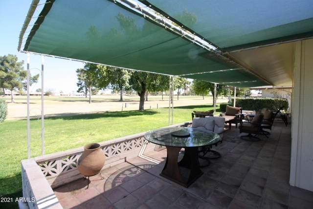 9718 W Oak Ridge Drive, Sun City, AZ 85351 (MLS #6200951) :: The Luna Team