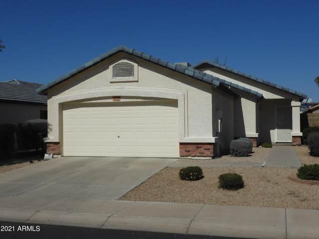 3006 W Zachary Drive, Phoenix, AZ 85027 (MLS #6200987) :: Maison DeBlanc Real Estate