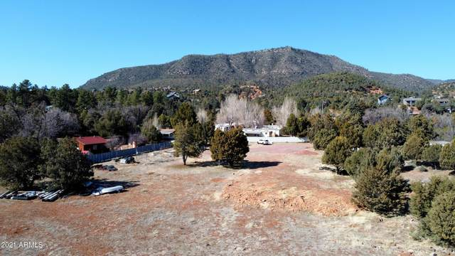 4166 N Az Highway 87, Pine, AZ 85544 (MLS #6201009) :: The Newman Team