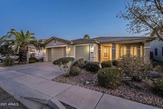 7223 W Park Street, Laveen, AZ 85339 (MLS #6201075) :: Openshaw Real Estate Group in partnership with The Jesse Herfel Real Estate Group