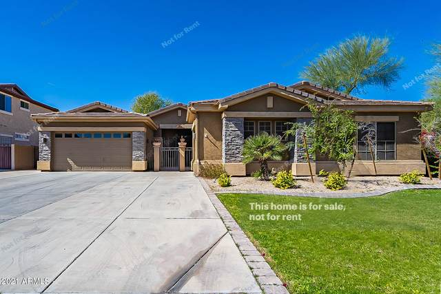 3154 S Cottonwood Drive, Gilbert, AZ 85295 (MLS #6201128) :: Yost Realty Group at RE/MAX Casa Grande