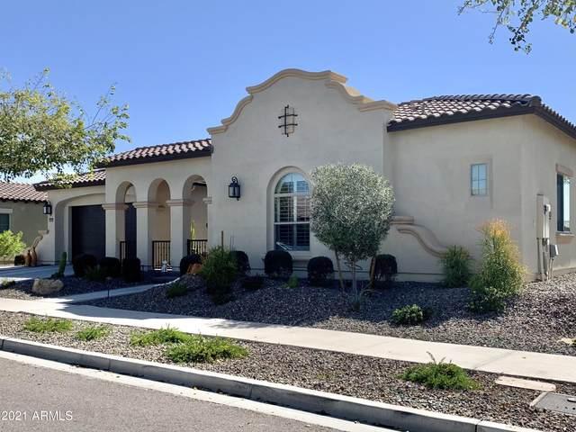 20525 W Meadowbrook Avenue, Buckeye, AZ 85396 (MLS #6201199) :: Yost Realty Group at RE/MAX Casa Grande