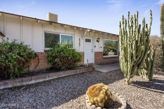 8547 E Roanoke Avenue, Scottsdale, AZ 85257 (MLS #6201278) :: Dave Fernandez Team | HomeSmart