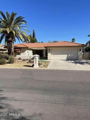 26037 S Hollygreen Drive, Sun Lakes, AZ 85248 (MLS #6201361) :: Maison DeBlanc Real Estate