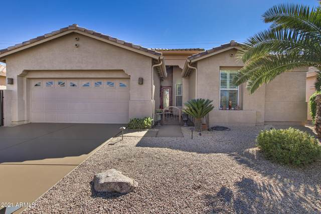 9843 E Stoney Vista Drive, Sun Lakes, AZ 85248 (MLS #6201363) :: Yost Realty Group at RE/MAX Casa Grande