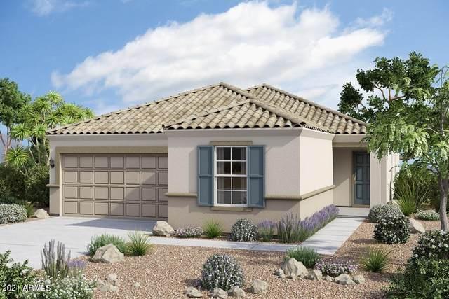 12548 W Glenn Drive, Glendale, AZ 85307 (MLS #6201364) :: Yost Realty Group at RE/MAX Casa Grande