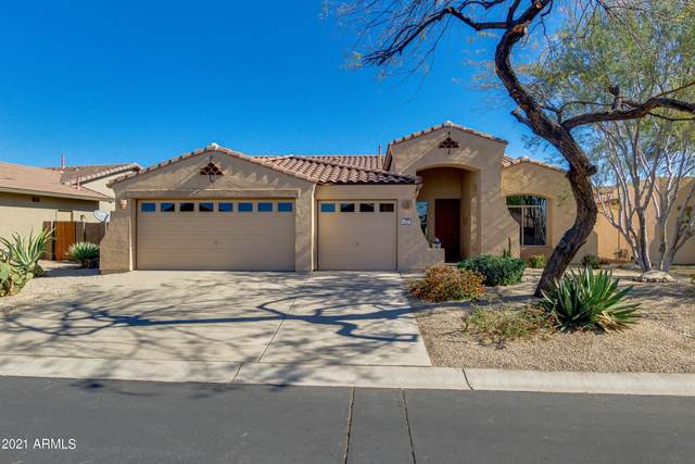8297 S Desert Preserve Court, Gold Canyon, AZ 85118 (MLS #6201395) :: The Laughton Team