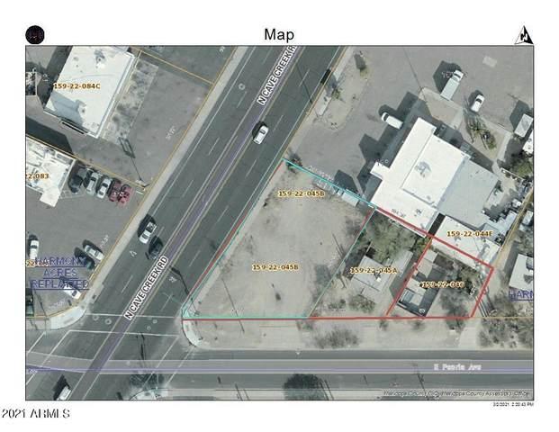 10605 N Cave Creek Road, Phoenix, AZ 85020 (MLS #6201426) :: The Newman Team