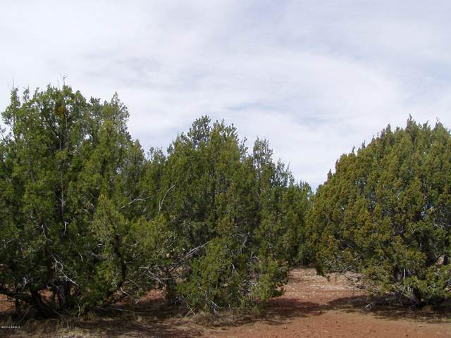 LOT 102 N Ranch Road, Concho, AZ 85924 (MLS #6201494) :: The Newman Team