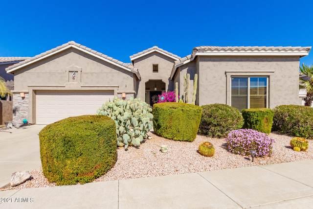 4818 E Bluefield Avenue, Scottsdale, AZ 85254 (MLS #6201576) :: Executive Realty Advisors