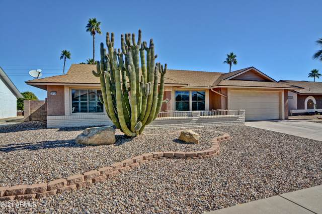 14214 W Yosemite Drive, Sun City West, AZ 85375 (MLS #6201647) :: The Dobbins Team