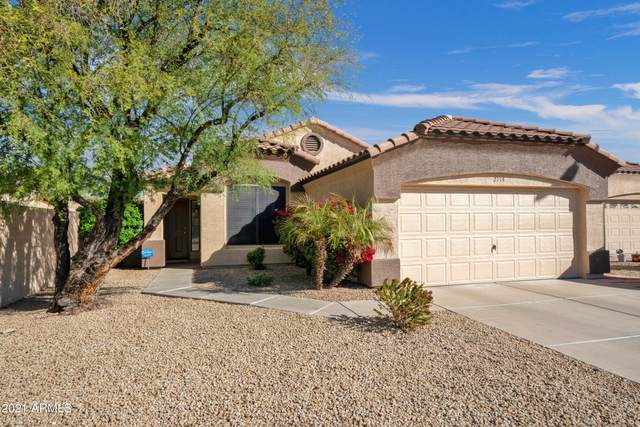 2114 W Tracy Lane, Phoenix, AZ 85023 (MLS #6201674) :: The Laughton Team