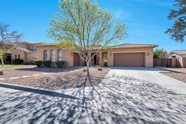 20243 E Poco Calle, Queen Creek, AZ 85142 (MLS #6201686) :: Arizona 1 Real Estate Team