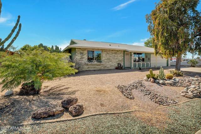 9859 W Wrangler Drive, Sun City, AZ 85373 (MLS #6201747) :: CANAM Realty Group