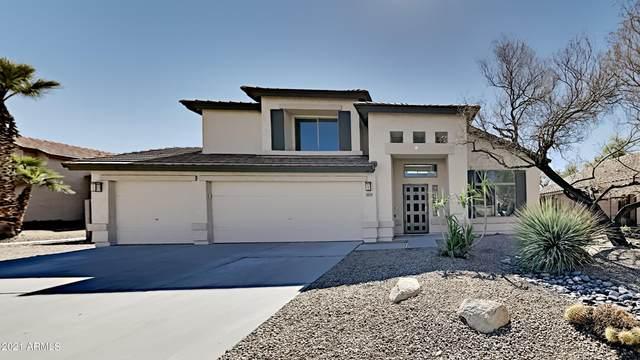 10359 W Primrose Drive, Avondale, AZ 85392 (MLS #6201792) :: The AZ Performance PLUS+ Team