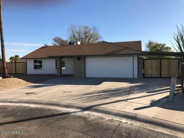 2250 E Kathleen Road, Phoenix, AZ 85022 (MLS #6201860) :: Selling AZ Homes Team