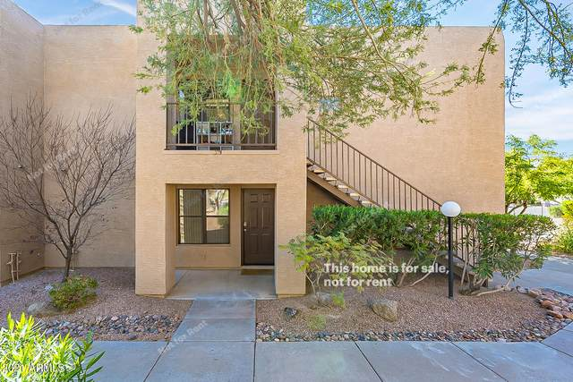 14910 N Kings Way #104, Fountain Hills, AZ 85268 (MLS #6201882) :: The Everest Team at eXp Realty
