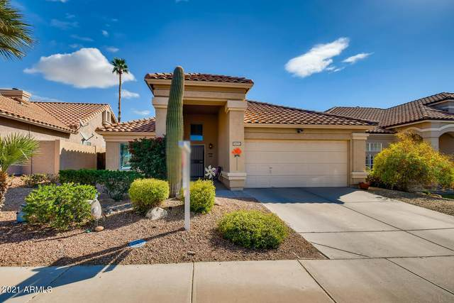 16025 S 12TH Place, Phoenix, AZ 85048 (MLS #6201896) :: Yost Realty Group at RE/MAX Casa Grande