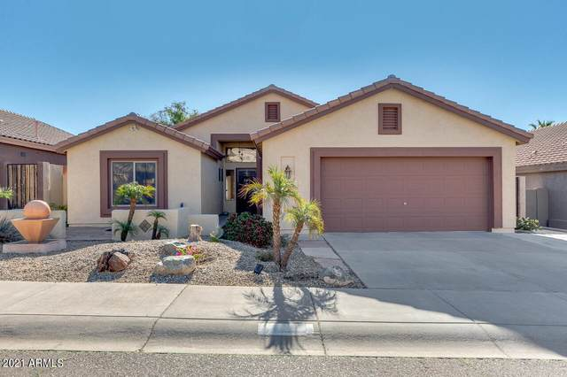 16027 S 18TH Avenue, Phoenix, AZ 85045 (MLS #6201900) :: Yost Realty Group at RE/MAX Casa Grande