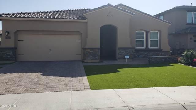 14619 W Pasadena Avenue, Litchfield Park, AZ 85340 (MLS #6202011) :: The Carin Nguyen Team
