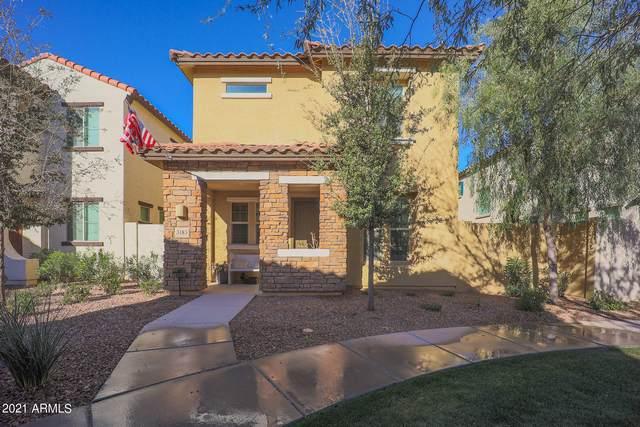 3183 S Magnolia Lane, Chandler, AZ 85286 (MLS #6202051) :: Yost Realty Group at RE/MAX Casa Grande