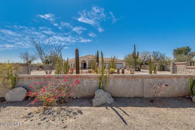 10937 E Brown Road, Mesa, AZ 85207 (MLS #6202073) :: Long Realty West Valley
