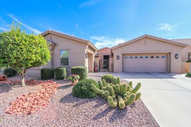 10133 E Copper Drive, Sun Lakes, AZ 85248 (MLS #6202082) :: Long Realty West Valley