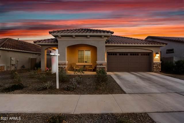 20403 W Calle Encorvada, Buckeye, AZ 85396 (MLS #6202123) :: Power Realty Group Model Home Center