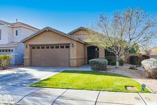 6774 W Evergreen Terrace, Peoria, AZ 85383 (MLS #6202144) :: Howe Realty