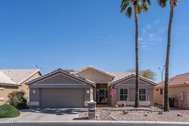 3323 N 146TH Drive, Goodyear, AZ 85395 (MLS #6202145) :: Yost Realty Group at RE/MAX Casa Grande