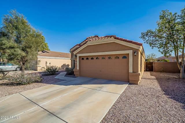 1779 E San Xavier Drive, Casa Grande, AZ 85122 (MLS #6202182) :: Yost Realty Group at RE/MAX Casa Grande