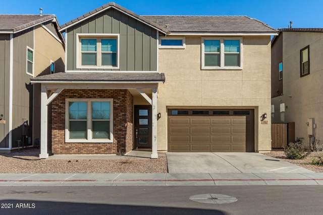 774 W Winchester Drive, Chandler, AZ 85286 (MLS #6202204) :: Yost Realty Group at RE/MAX Casa Grande