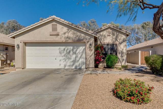 2746 E Carol Avenue, Mesa, AZ 85204 (MLS #6202260) :: Walters Realty Group