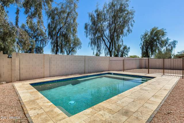 18213 N 7TH Drive, Phoenix, AZ 85023 (MLS #6202334) :: Yost Realty Group at RE/MAX Casa Grande