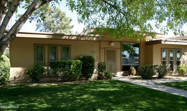 14219 N Newcastle Drive, Sun City, AZ 85351 (MLS #6202410) :: Nate Martinez Team
